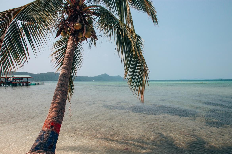 star fish beach phu quoc