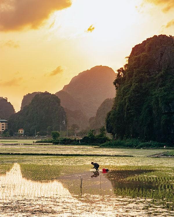 Ninh Binh Tam Coc Sights