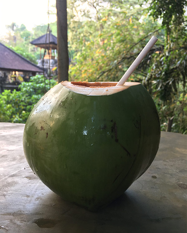 coconut-water-bali-food
