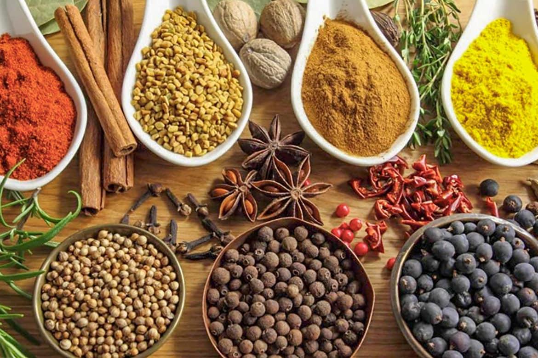 indian-food-bali